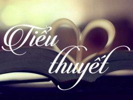 Tiểu thuyết